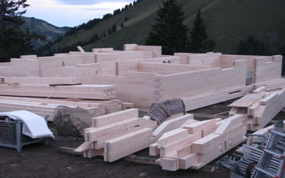 Neubau Krautetsalp | Die Rechtler