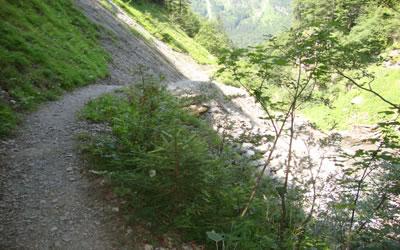 Sanierung Tobelweg | Die Rechtler