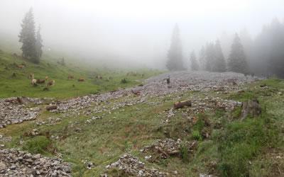 Unwetter 2015 | Die Rechtler